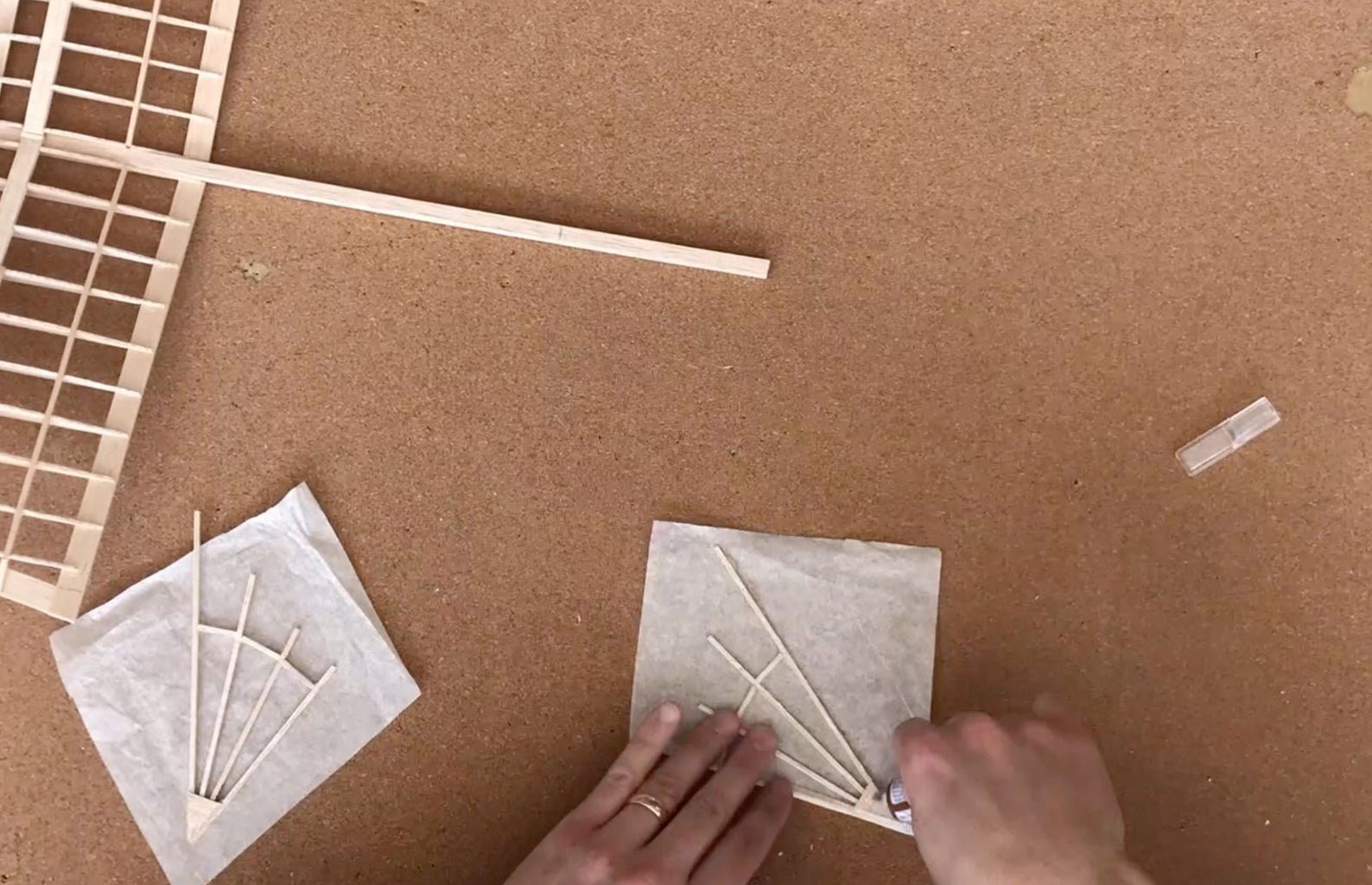 Cover Wings in Tissue Paper