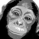 Dr MonkeyMan