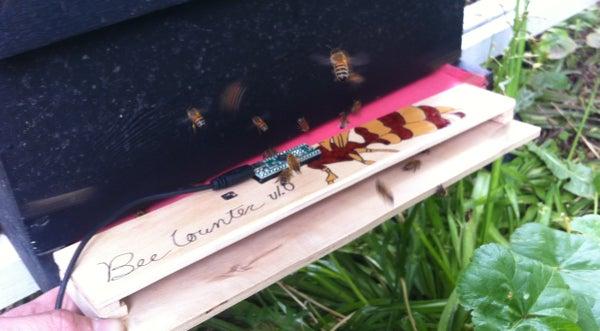 Honey Bee Counter