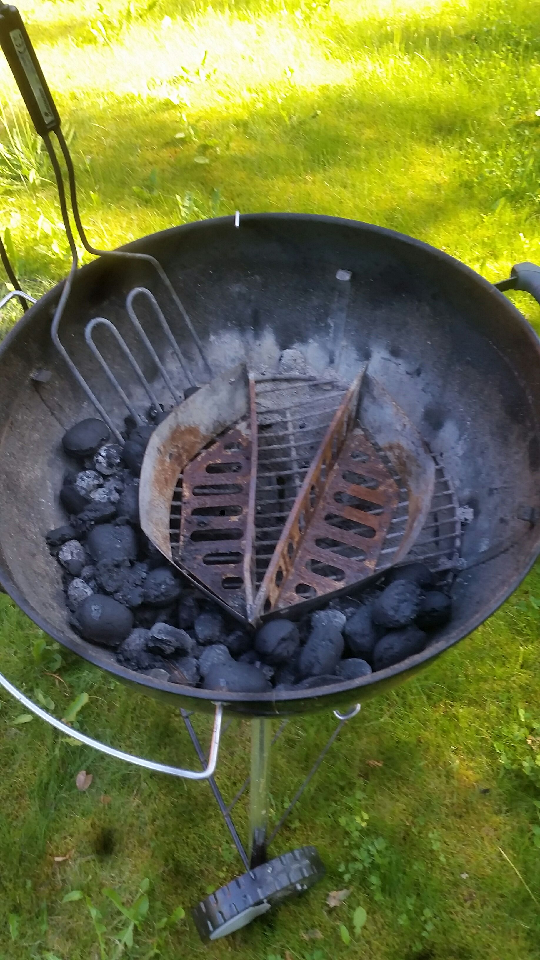 Simple Gnat Trap With Your Grill