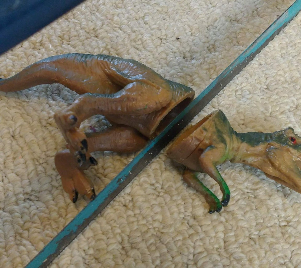 Cut Dinosaurs in Half!