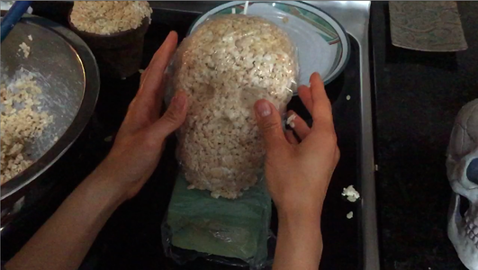 Wrap the Skull in Plastic Wrap to Help With Sculpting (Add More Rice Krispies As Needed)