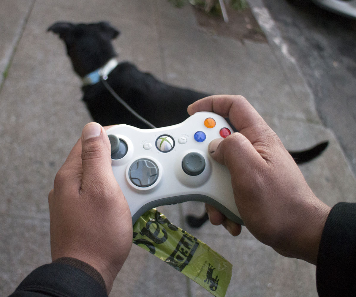 game controller dog leash
