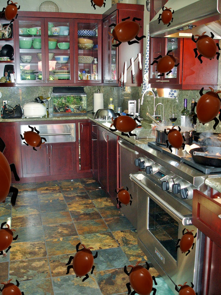 What My Kitchen Used to Look Like