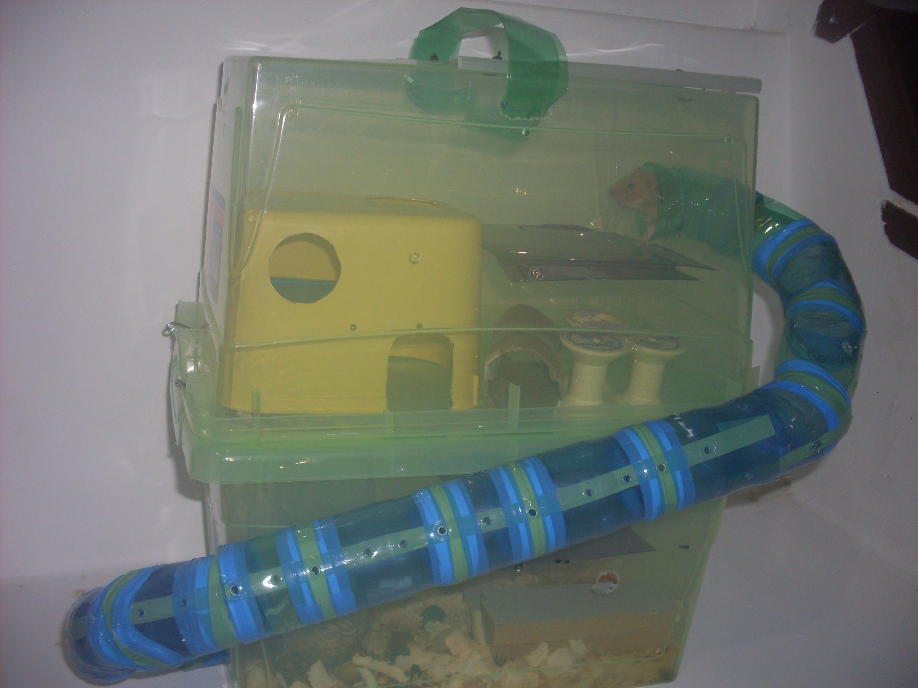 Hamster House Jorginho