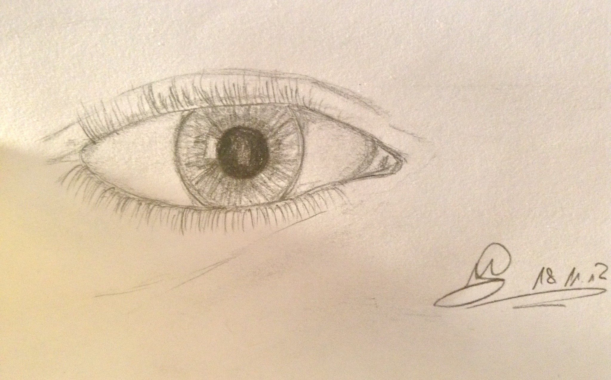 Draw A Realistic Eye With Only A Pen