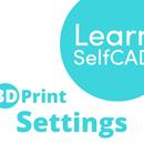 3.2. 3D Printing - Settings | Learn SelfCAD