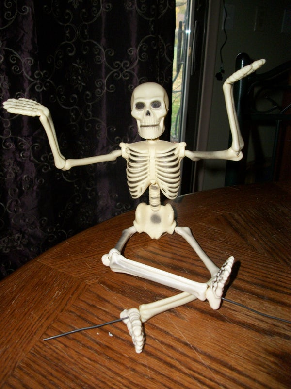 Posable Skelly