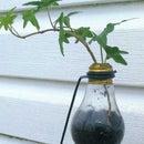 Bright Idea Plant Stand💡