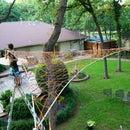 Triple tree hammock