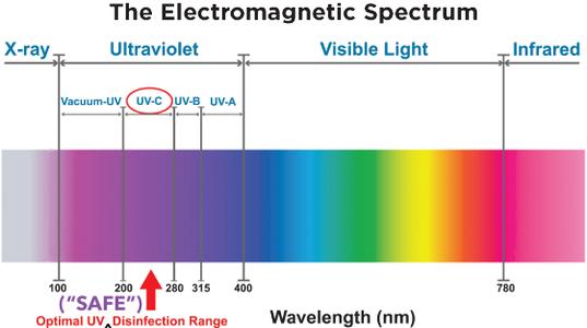 Safe Range to Human Cells and Retinas, While Eradicating Virus Cells