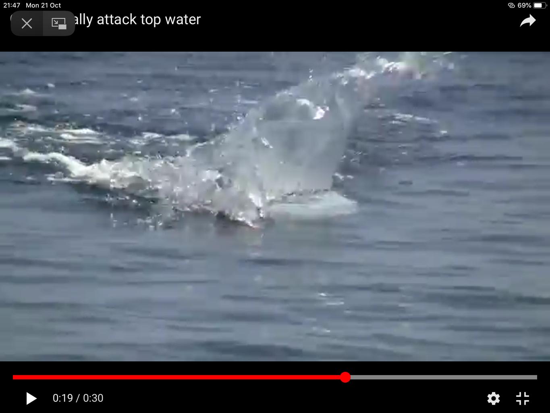 Epoxy Splash Effect