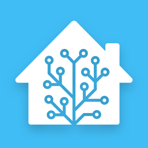 Install Home Assistant
