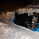 Making a curved snow ramp