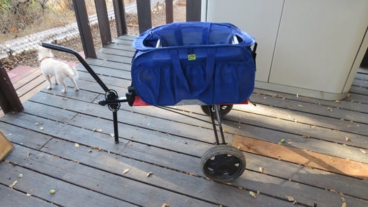 Folding Cart for Your Bicycle or Shopping When Walking to the Market