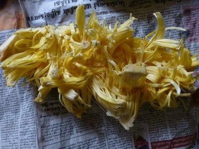 Extract Bulbs and Remove Seeds