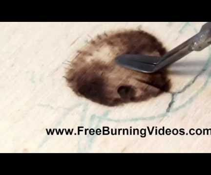 Pyrpgraphy: How to Burn Realistic Looking Dog and Wolf Noses