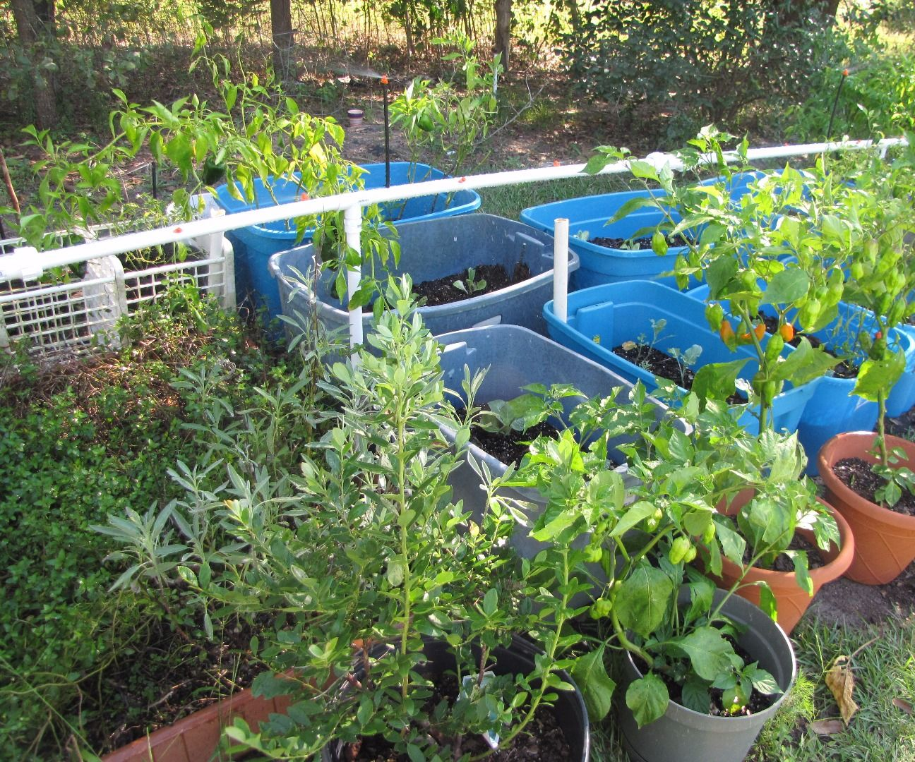 Fast and Easy, PVC Garden Watering System (for under $70)