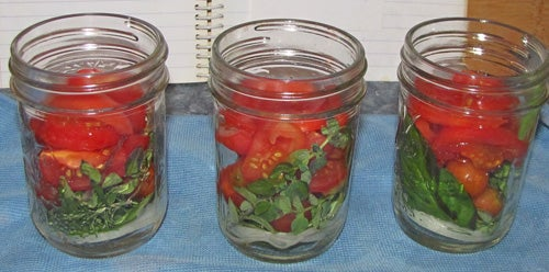 Pickling the Tomatoes...