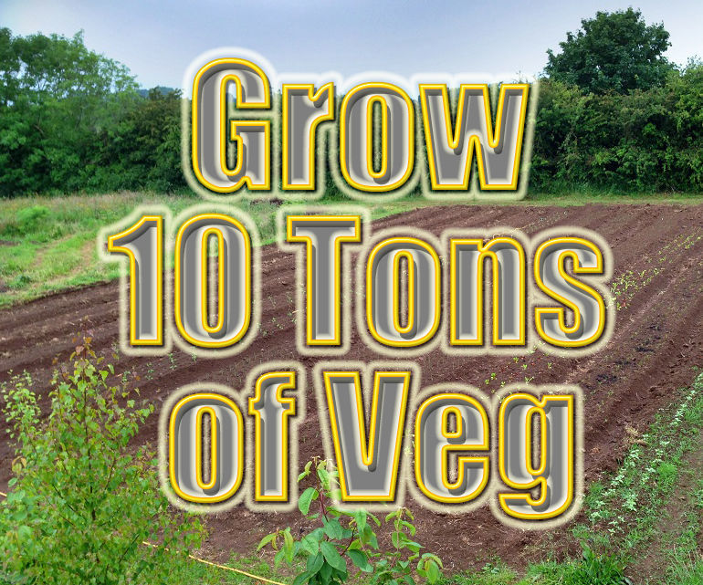 Grow Ten Tons of Organic Vegetables: Leeks, Onions, Potatoes, Broad beans, Cabbage, Cauliflower, Sweetcorn, Courgettes & marrows, Sugar beet, Beetroot, Carrots, Swede, Kale, Calebrese & Broccoli, Brussel sprouts, rhubarb & Strawberries