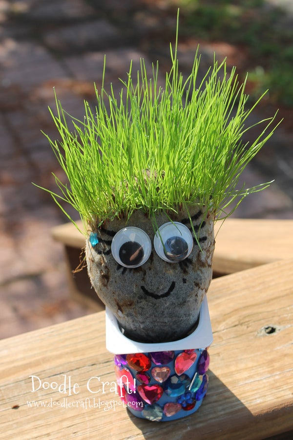Haircut Chia Pet Grass Heads!  Great for Summer Break!