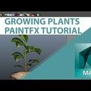 Animate Growing Plants In Autodesk Maya