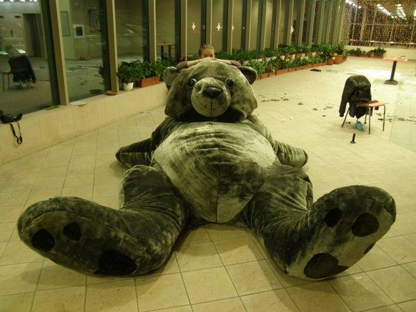 Gigantic Teddy Bear