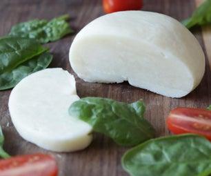 自制的马苏里拉奶酪从奶粉