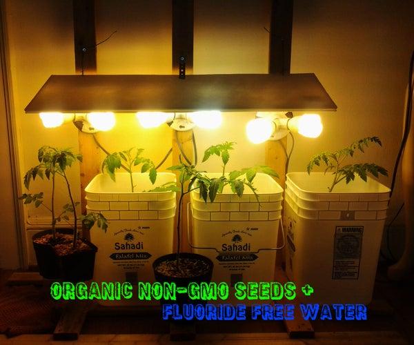 Indoor Tomato Grower
