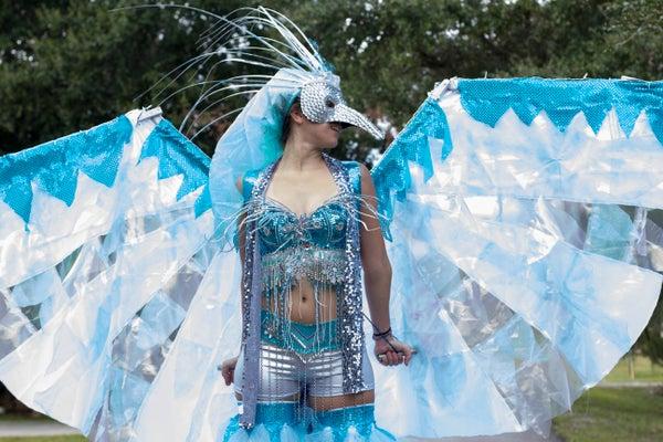 Ice Phoenix Costume
