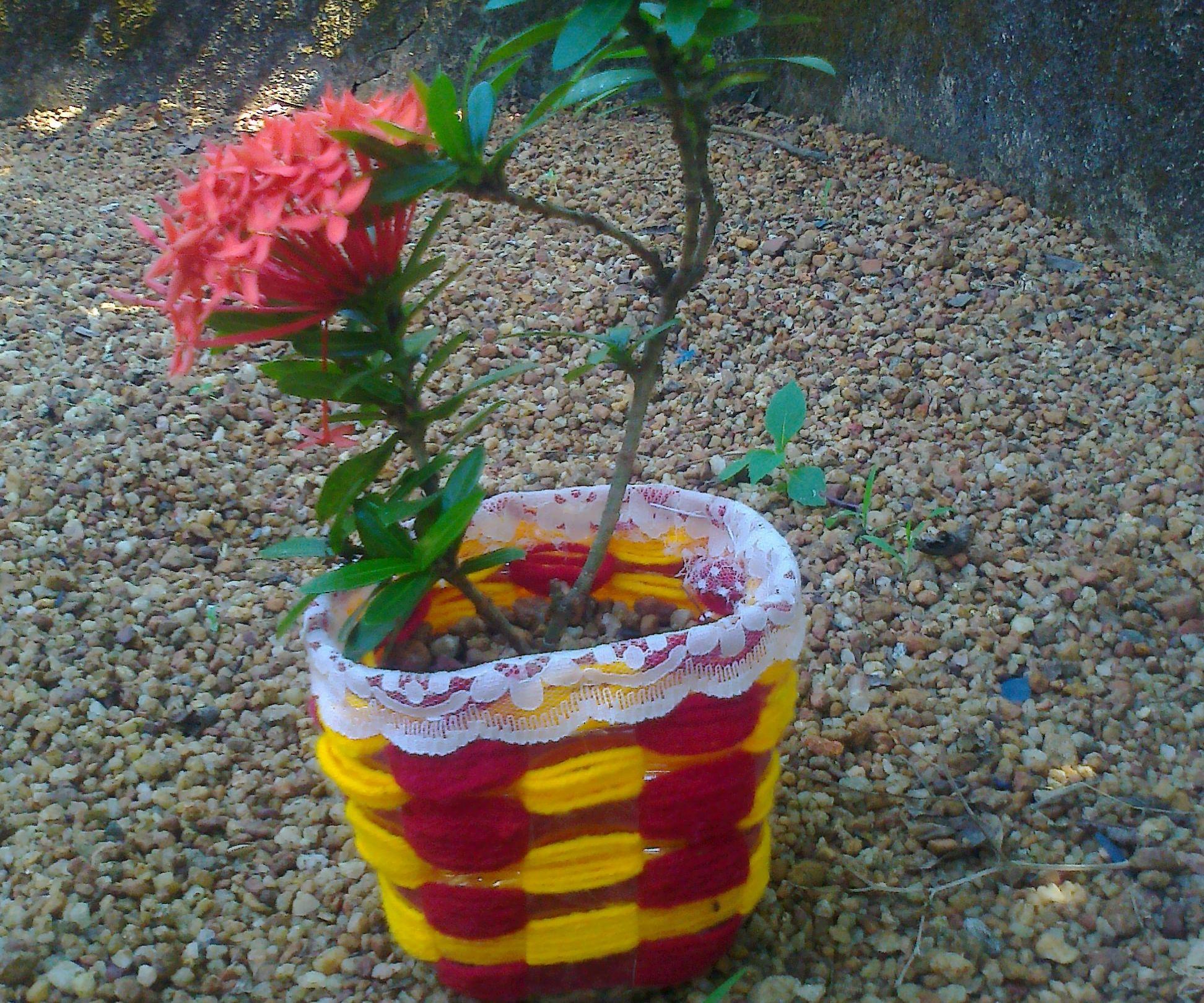 Attractive flower pot