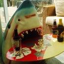 Shark's head table