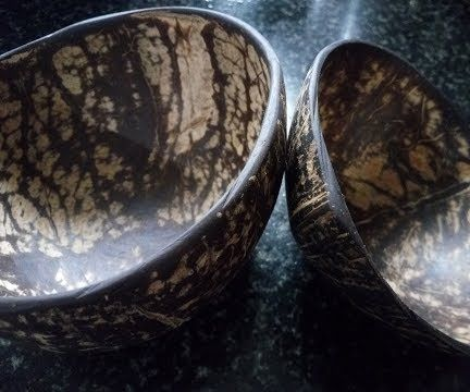 Coconut Shell Bowl in Home