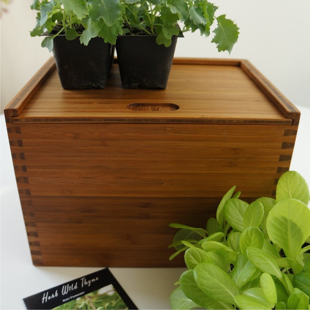 Seed Box With Mini Dovetails in Plyboo