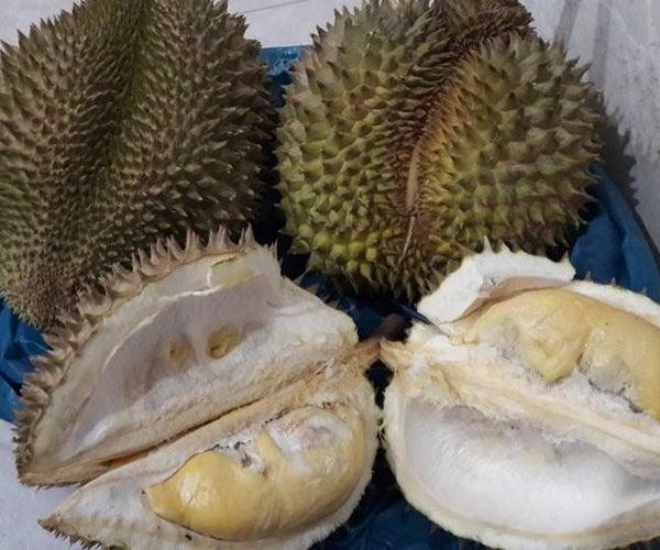 Asam Durian or Tempoyak