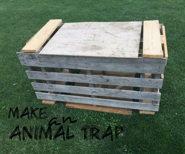 Wooden Animal Trap