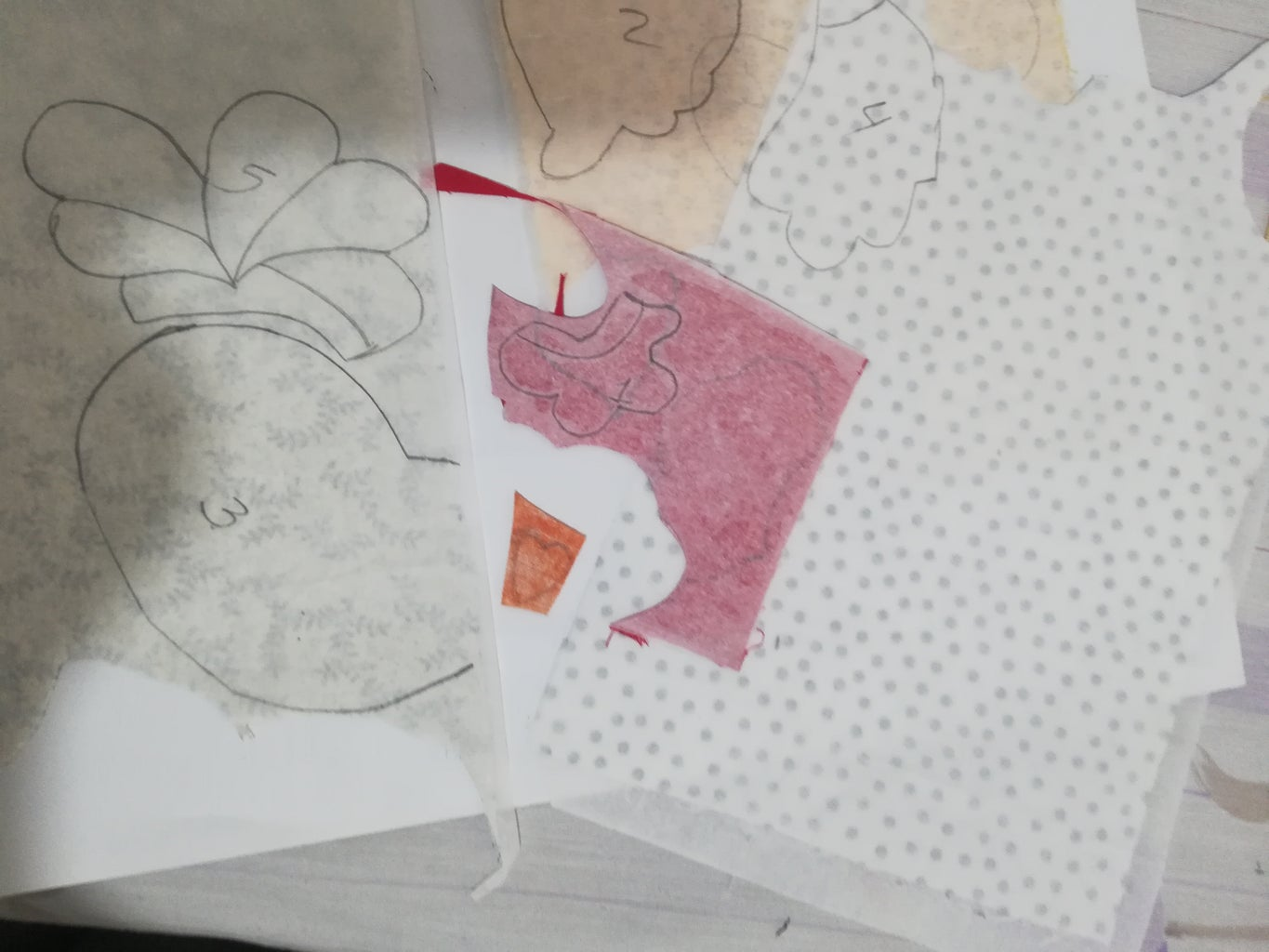 Trace Mold on the Fabric