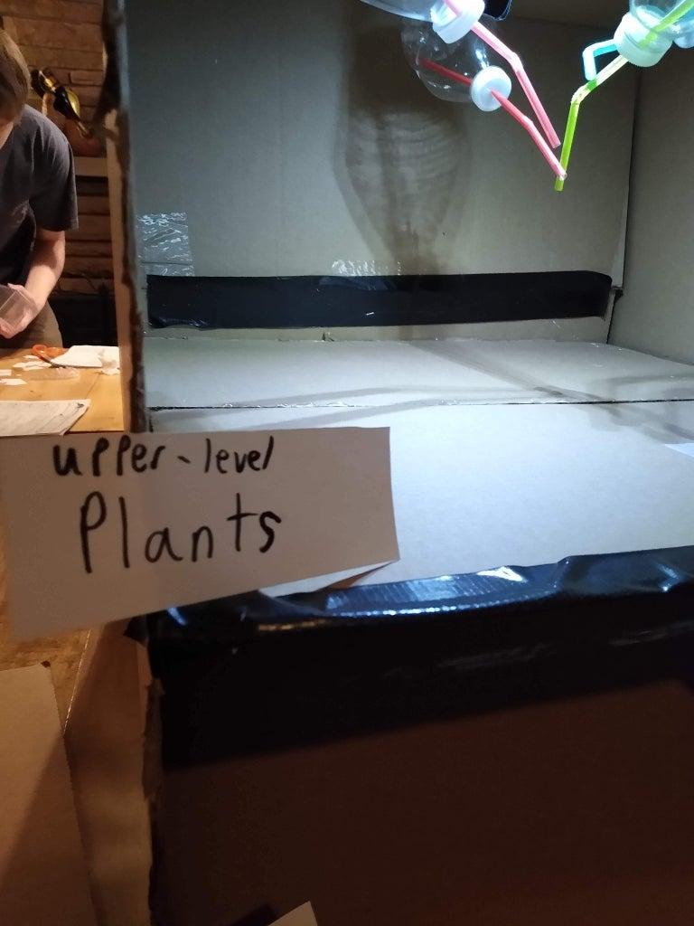 Upper-Level Plants