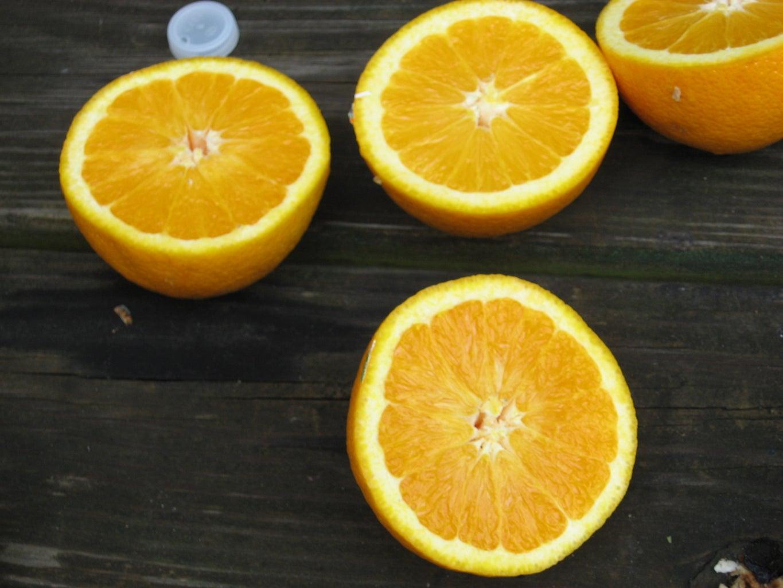 Cut the Oranges