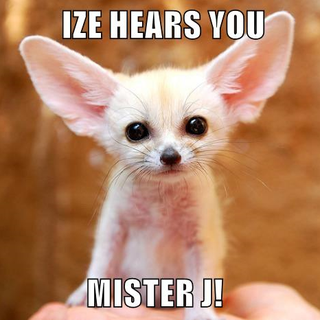 IZE HEARS YOU.png