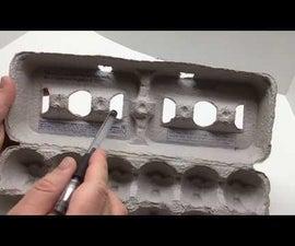 Start Seeds in an Egg Carton