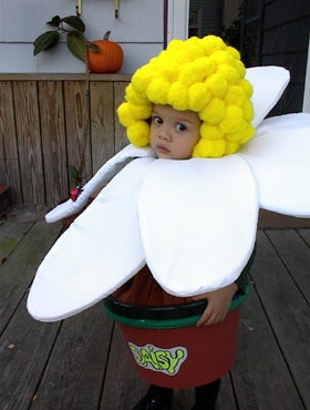 """Daisy in a Pot"" Costume"