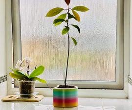 Rainbow Heart Self-Watering Pot