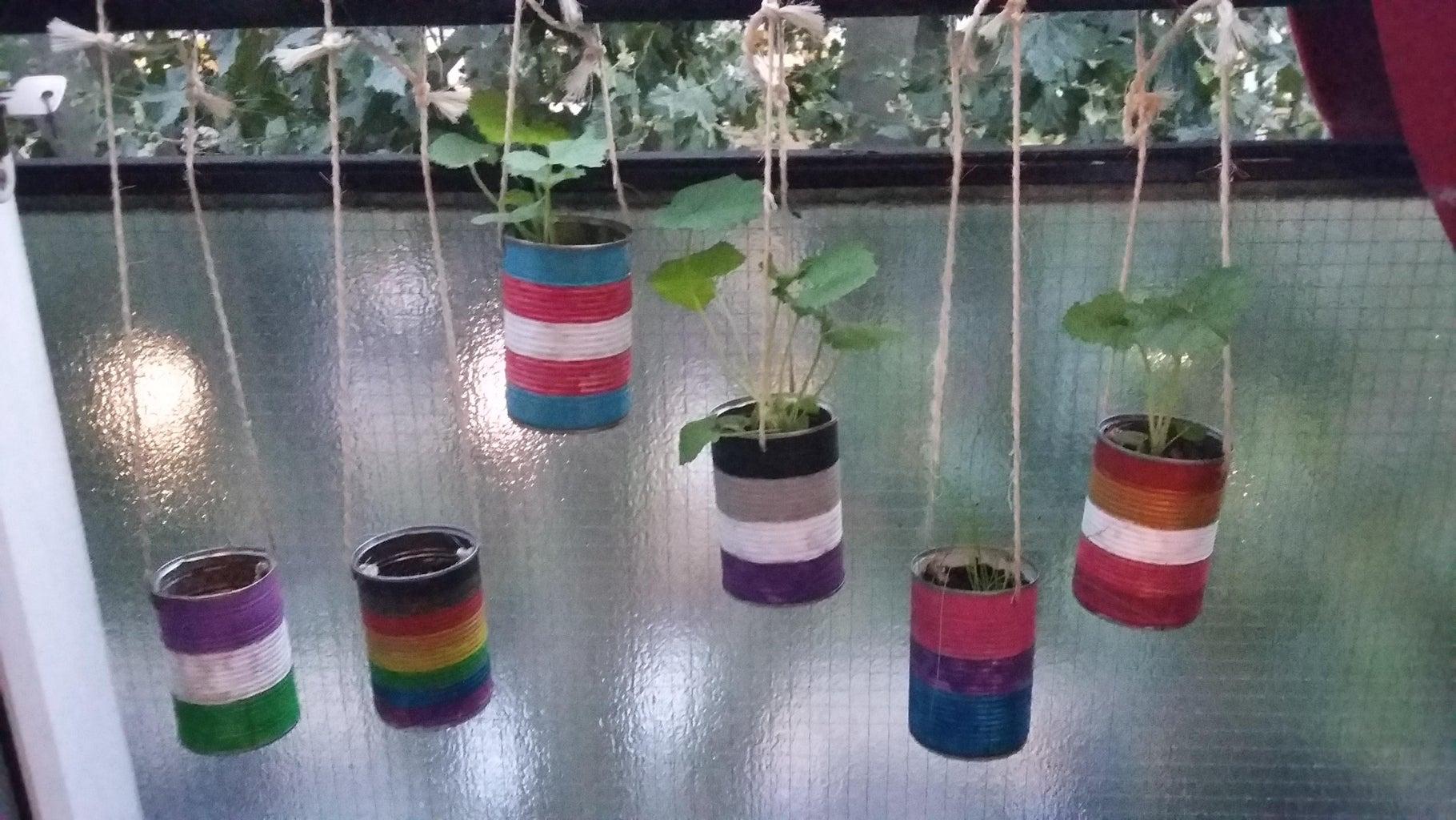 Plant Pots - Hanging & Decoration