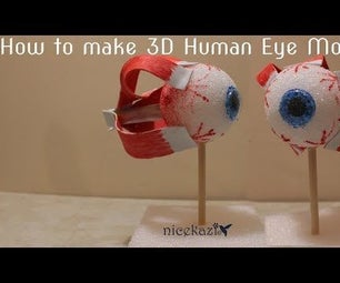 How to Make 3D Human Eye Model: Easy Way