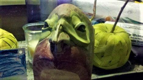 Face/Horn Sculpting