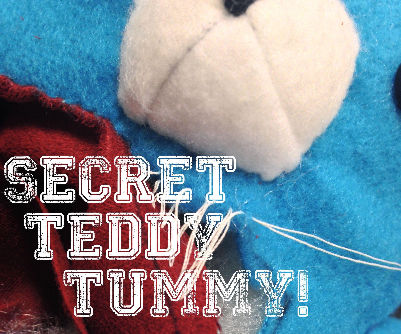 Teddy Bear Secret Tummy!!!