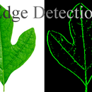 c# Edge Detection