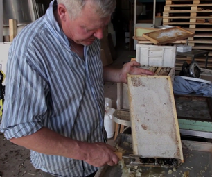 How to Extract Honey From Honeycomb