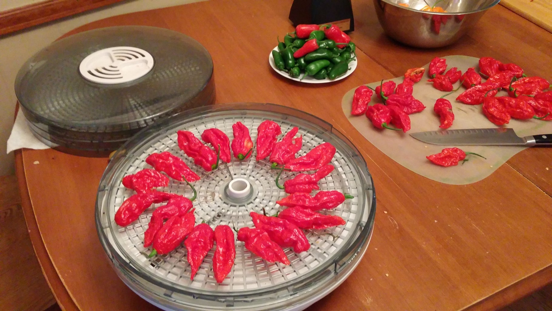 What Kind of Dehydrator?